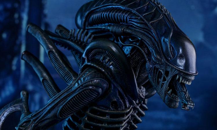 alien-covenant-movie-2017-2_750x450